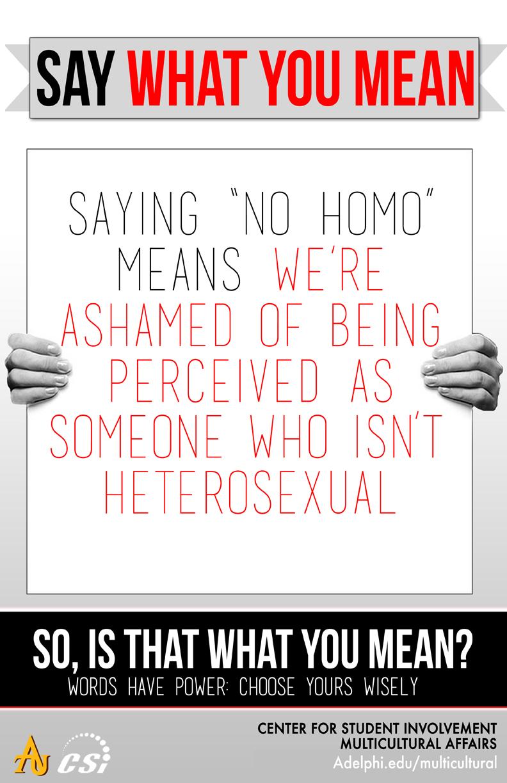 Say What You Mean - No Homo
